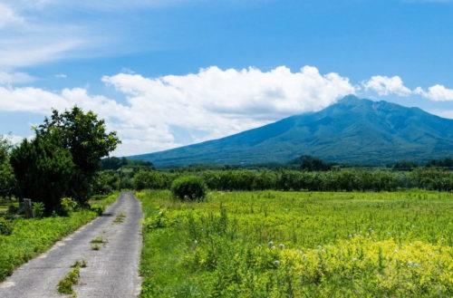 山と道の画像